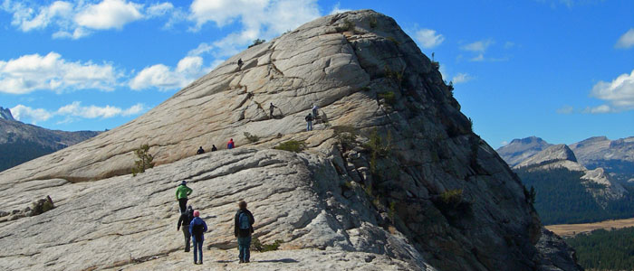 GEOL 72H Students climbing Lembert Dome in Yosemite National Park.